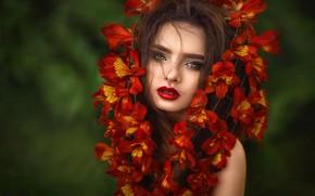 Картинка взгляд, девушка, цветы, лицо, фон, портрет, Илона Баимова, Виктория Маяцкая