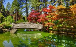 Картинка вода, солнце, деревья, мост, пруд, парк, камни, HDR, Вашингтон, США, Japanese Garden, Spokane