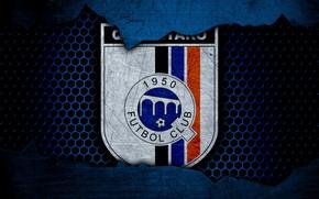 Картинка wallpaper, sport, logo, football, Queretaro