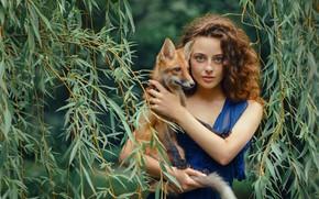 Картинка взгляд, девушка, ветки, настроение, лиса, кудри, ива, лисёнок, Настя, Анастасия Добровольская