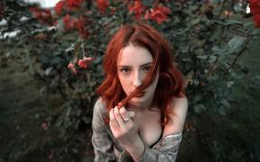 Картинка Сергей Кузичев, Полина Марьяновская, веснушки, рыжая