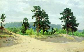 Картинка лес, пейзаж, реализм, Шишкин, 1890, Опушка леса
