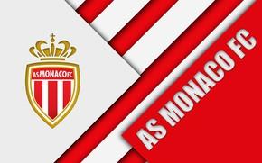 Картинка wallpaper, sport, logo, football, Ligue 1, AS Monaco
