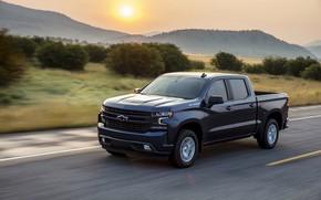 Картинка движение, Chevrolet, пикап, кустарник, Silverado, тёмно-синий, 2019, RST
