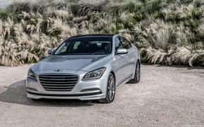 Картинка car, машина, трава, седан, grey, Genesis, серая машина, Genesis G80