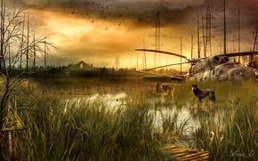 Картинка ЛЭП, Сталкер, STALKER, Вертолёт, Волки, Болота, Знак радиации