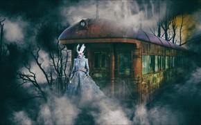 Картинка Night, train, horror, fantasy