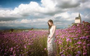 Картинка поле, лето, девушка, цветы, азиатка