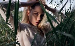 Картинка зелень, трава, взгляд, солнце, природа, поза, модель, портрет, макияж, прическа, блузка, белая, шатенка, красотка, боке, …