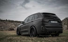 Картинка вид сзади, 2018, BMW X5, кроссовер, X5M, Z Performance