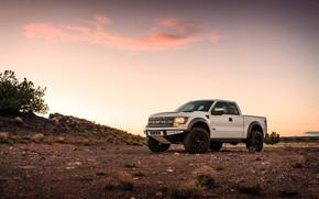Картинка Ford, Raptor, Sunset, White