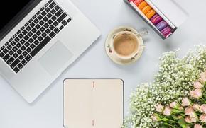 Картинка цветы, розы, букет, ноутбук, розовые, pink, flowers, beautiful, romantic, coffee cup, roses, laptop, macaron, чашка ...