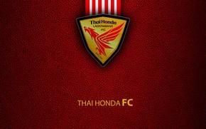 Картинка wallpaper, sport, logo, football, Thai Honda