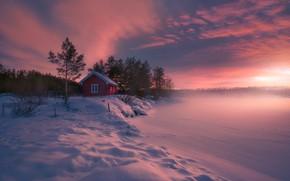 Картинка дом, мороз, Норвегия, Norway, Ringerike