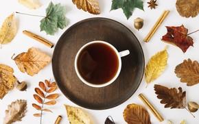 Картинка осень, листья, фон, дерево, кофе, colorful, чашка, wood, background, autumn, leaves, cup, coffee, maple