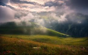 Картинка облака, цветы, горы, туман, Природа