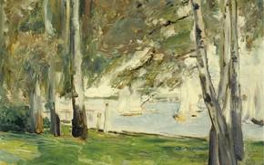 Картинка пейзаж, лодка, картина, парус, 1924, Max Liebermann, Макс Либерман, Березы на Восточном Берегу Ванзее