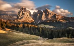 Картинка лес, горы, склоны, Альпы, Доломиты