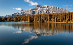 Картинка лес, небо, горы, отражение, скалы, голубое, берег, склоны, вид, ели, Канада, Альберта, водоем, водная гладь