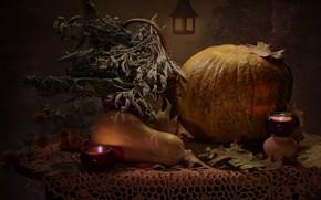 Картинка осень, свеча, тыква, натюрморт, хеллоуин