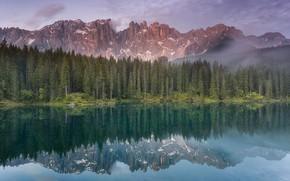 Картинка пейзаж, горы, природа, озеро, отражение, красота, ели, ёлки