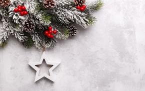 Картинка снег, Новый Год, Рождество, star, Christmas, snow, New Year, decoration, Happy, Merry, fir tree, ветки …
