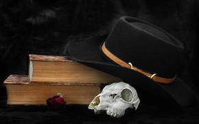 Картинка шляпа, книга, череп