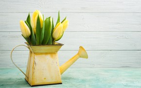 Картинка цветы, букет, весна, желтые, тюльпаны, лейка, декор, IRINA BORT