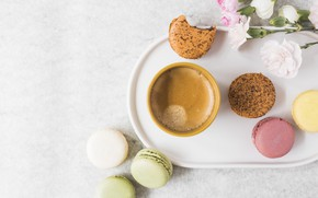 Картинка цветы, кофе, чашка, десерт, flowers, пирожные, cup, сладкое, sweet, coffee, dessert, macaroon, french, macaron, макаруны