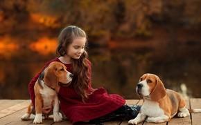 Картинка собаки, девочка, друзья, боке, Бигль, Екатерина Борисова