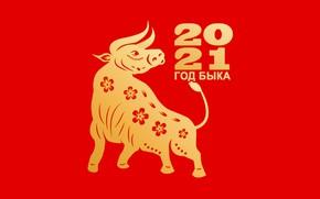 Картинка стилизация, цифры, Новый год, красный фон, дата, бык, символ года, 2021, животное года, год быка