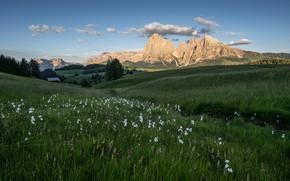 Картинка зелень, небо, трава, солнце, облака, деревья, цветы, горы, природа, скалы, поля, домик, луга