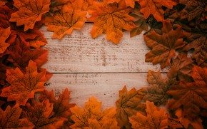 Обои осень, листья, фон, дерево, colorful, доска, wood, background, autumn, leaves, осенние, maple