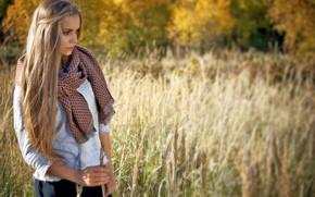 Картинка осень, трава, девушка, солнце, деревья, поляна, модель, портрет, макияж, шарф, прическа, блондинка, кофточка, стоит, красивая, …