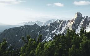 Картинка небо, горы, ветки, склоны, вершины, даль, Альпы, дымка, хвоя, хвойные, снежные, Доломиты