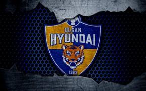 Картинка wallpaper, sport, logo, football, Ulsan Hyundai
