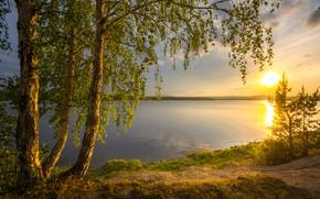 Картинка солнце, деревья, пейзаж, закат, природа, река, берёзы, берега, Урал