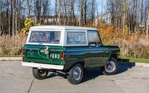 Картинка Ford, зелёный, Wagon, 1974, Bronco