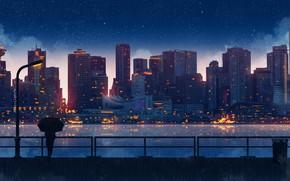 Картинка река, небоскребы, ограждение, набережная, свет в окнах, вонарь, силуэт девушки, огни ночного города, под зонтом, …