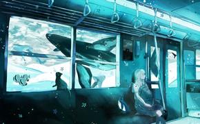Картинка кошка, девушка, поезд, фэнтези, пингвин, под водой