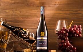 Картинка вино, бутылка, виноград, бренд