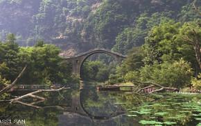 Картинка мост, растительность, водоём, the bridge, environment set