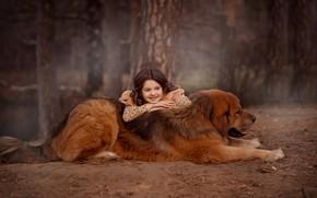 Картинка лес, собака, девочка, друзья, пёс, тибетский мастиф, Валентина Ермилова