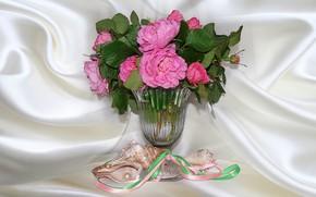 Картинка природа, настроение, розы, красота, ракушки, натюрморт, красивые, розовые цветы, beautiful, рябина, beauty, harmony, обои на …