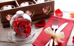 Картинка романтика, роза, свечи, вилка