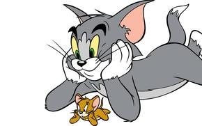 Картинка кот, мышь, белый фон, Том и Джерри