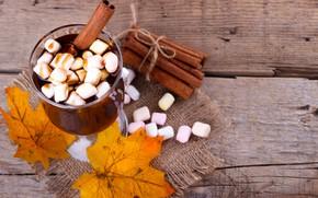 Картинка осень, листья, фон, доски, colorful, корица, клен, wood, background, autumn, leaves, какао, осенние, cinnamon, maple, …