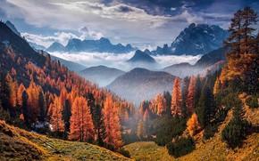 Картинка осень, лес, небо, облака, деревья, горы, природа, скалы