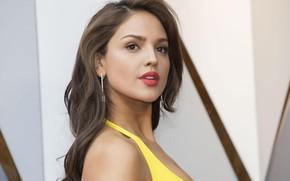 Картинка взгляд, макияж, актриса, певица, hair, Eiza Gonzalez, Эйса Гонсалес, Eiza González
