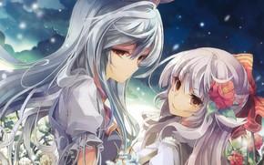 Картинка звездное небо, цветок в волосах, Touhou Project, Fujiwara no Mokou, Проект Восток, две девочки, длинные …